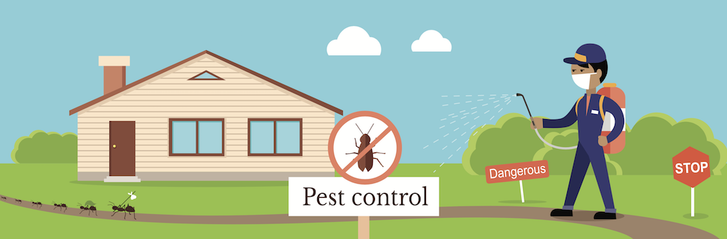 ant-pest-control-the-bug-man-portland-or